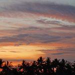 バリ島ウブド近郊2016年11月27日(日)朝の風景