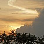 バリ島ウブド近郊2016年12月01日(木)朝の風景