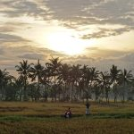 バリ島ウブド近郊2016年12月05日(月)朝の風景