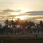 バリ島ウブド近郊2016年12月06日(火)朝の風景