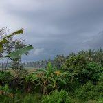 バリ島ウブド近郊2016年12月08日(木)朝の風景