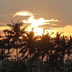バリ島ウブド近郊2016年12月19日(月)朝の風景
